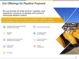 Our Offerings For Pipeline Proposal Ppt Powerpoint Presentation Styles Display