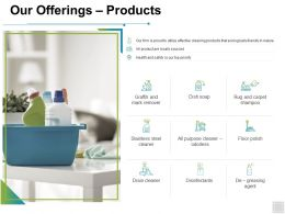 Our Offerings Products Icons Ppt Powerpoint Presentation Pictures Diagrams