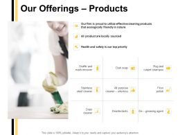 Our Offerings Products Ppt Powerpoint Presentation Templates