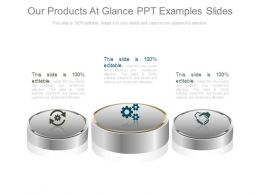 Our Products At Glance Ppt Examples Slides