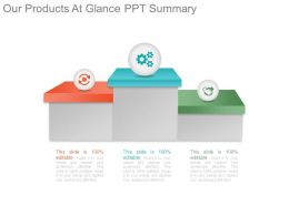 Our Products At Glance Ppt Summary