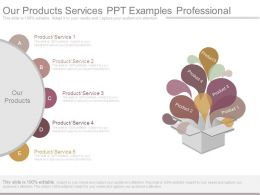 Our Products Services Ppt Examples Professional