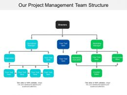 Our Project Management Team Structure