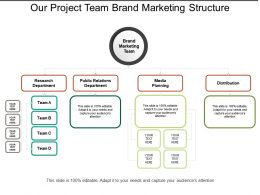 Our Project Team Brand Marketing Structure