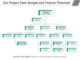 Our Project Team Budget And Finance Flowchart