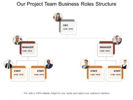 Our Project Team Business Roles Structure