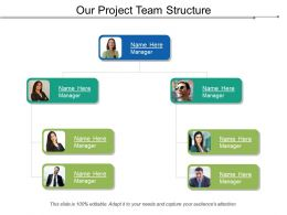 Our Project Team Structure