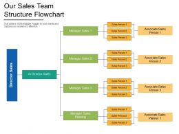 Our Sales Team Structure Flowchart