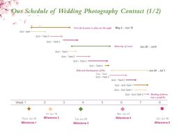 Our Schedule Of Wedding Photography Contract Milestone Ppt Powerpoint Presentation Show