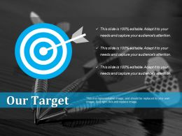 our_target_example_of_ppt_Slide01