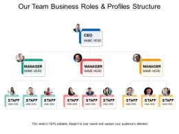 Our Team Business Roles And Profiles Structure