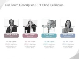Our Team Description Ppt Slide Examples