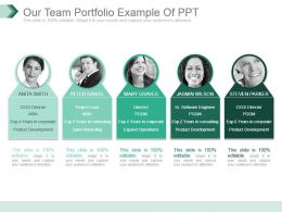 Our Team Portfolio Example Of Ppt