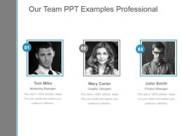 Our Team Ppt Examples Professional