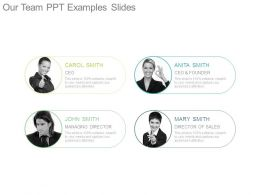 Our Team Ppt Examples Slides