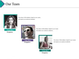 Our Team Ppt Gallery Template
