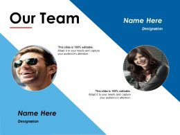 Our Team Ppt Summary Files