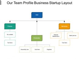 Our Team Profile Business Startup Layout