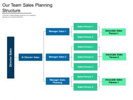Our Team Sales Planning Structure