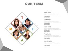 Our Team Slide For Business Professionals Powerpoint Slides