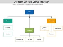 Our Team Structure Startup Flowchart