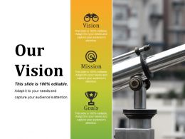 Our Vision Presentation Graphics