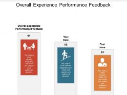 Overall Experience Performance Feedback Ppt Powerpoint Presentation Slides Guidelines Cpb