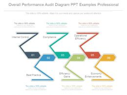 Overall Performance Audit Diagram Ppt Examples Professional