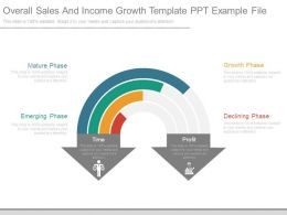 Overall Sales And Income Growth Template Ppt Example File