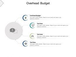 Overhead Budget Ppt Powerpoint Presentation Infographics Graphics Cpb