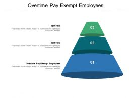 Overtime Pay Exempt Employees Ppt Powerpoint Presentation Slides Images Cpb