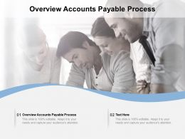 Overview Accounts Payable Process Ppt Powerpoint Presentation Professional Example Cpb