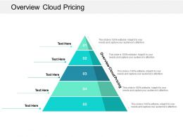 Overview Cloud Pricing Ppt Powerpoint Presentation Icon Clipart Cpb