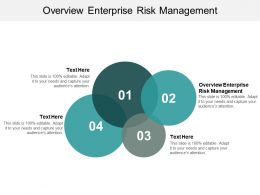 Overview Enterprise Risk Management Ppt Powerpoint Presentation Show Model Cpb