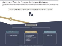Overview Of Expertise Extension Strategy And Its Impact Refrigerator Ppt Powerpoint Visual Aids