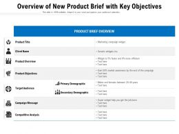 Overview Of New Product Brief With Key Objectives