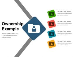 Ownership Example Ppt Infographic Template