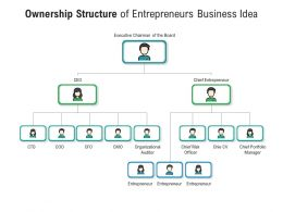 Ownership Structure Of Entrepreneurs Business Idea