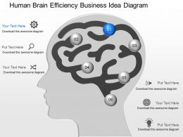pa Human Brain Efficiency Business Idea Diagram Powerpoint Template Slide