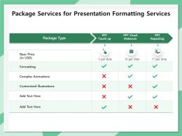 Package Services For Presentation Formatting Services Ppt File Formats