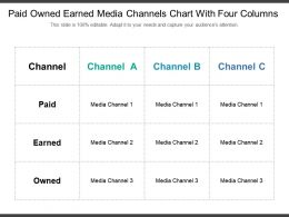 Paid Owned Earned Media Channels Chart With Four Columns