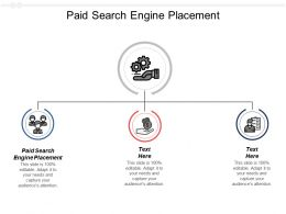 Paid Search Engine Placement Ppt Powerpoint Presentation Ideas Templates Cpb