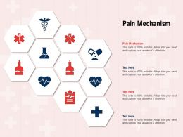 Pain Mechanism Ppt Powerpoint Presentation Slides Smartart