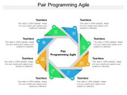 Pair Programming Agile Ppt Powerpoint Presentation Slides Information Cpb
