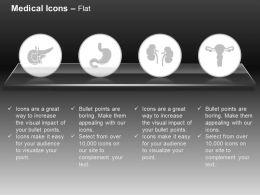 Pancreas Stomach Kidneys Uterus Ppt Icons Graphics