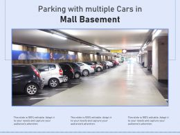 Parking With Multiple Cars In Mall Basement