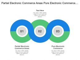 Partial Electronic Commerce Areas Pure Electronic Commerce Digital Product