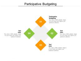 Participative Budgeting Ppt Powerpoint Presentation Professional Inspiration Cpb