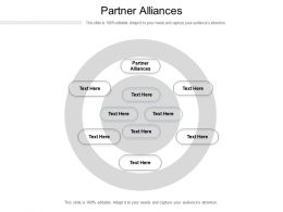 Partner Alliances Ppt Powerpoint Presentation Styles Icons Cpb