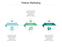 Partner Marketing Ppt Powerpoint Presentation Pictures Introduction Cpb
